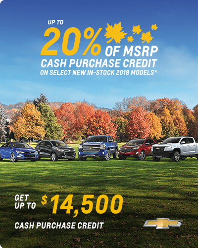 Up to 20% of MSRP cash purchase credit on select new in-stock 2018 models