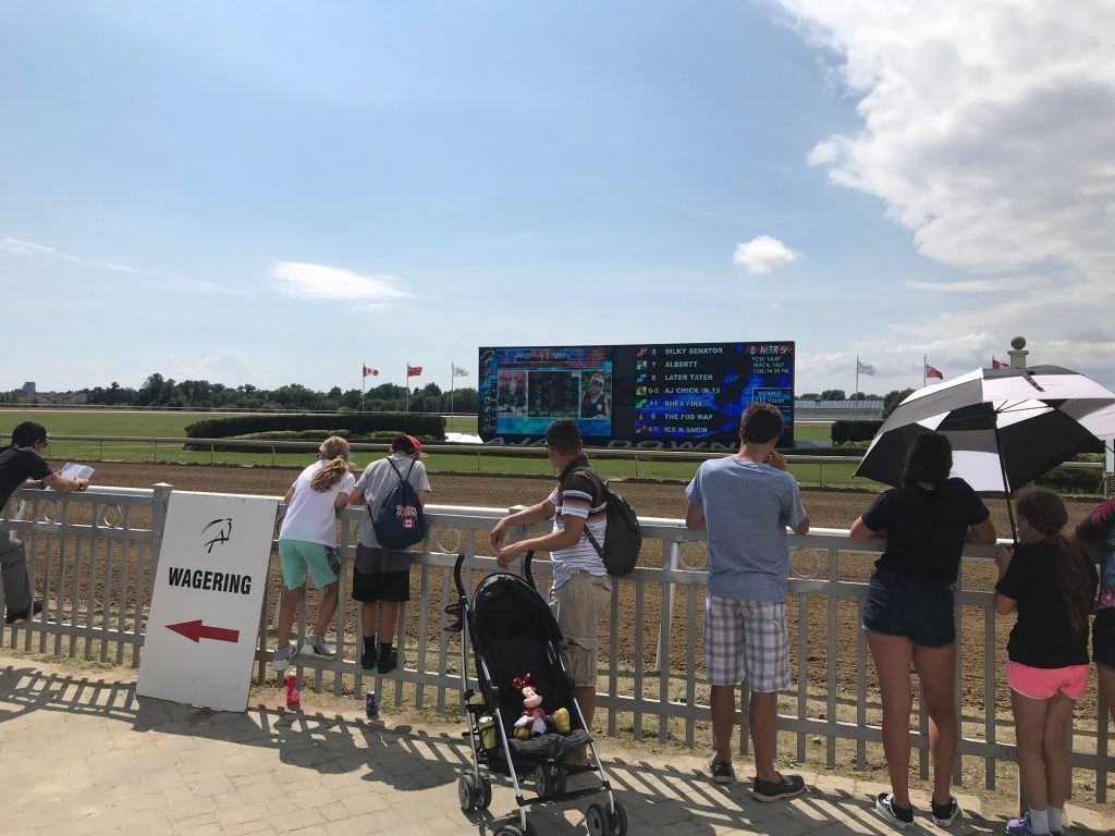 Horse Races at Ajax Downs for Family Fun Day 2019.