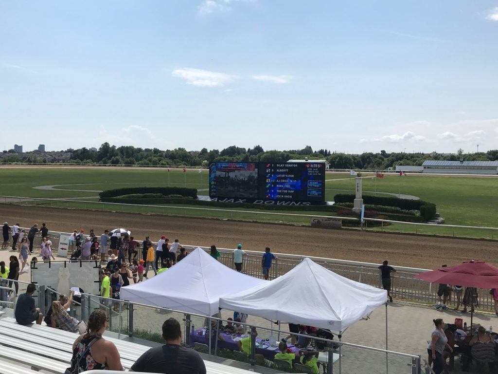 Horse Races at Ajax Downs on Family Fun Day 2019.