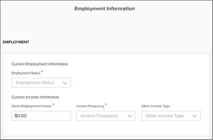 Step 3 Credit Application